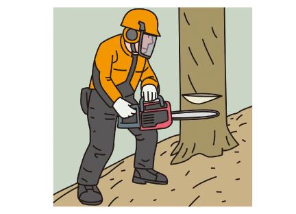 伐木等の業務(チェーンソー)に係る特別教育イメージ01